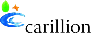 Zone Manager Clients | Carillion